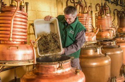 Distillerie de la Verveine du Velay Pagès