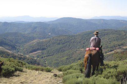 Balade et longues randonnées à cheval  – Domaine de Viaye