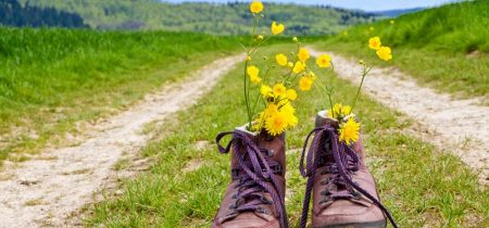Groups : walking holiday in La Chaise-Dieu